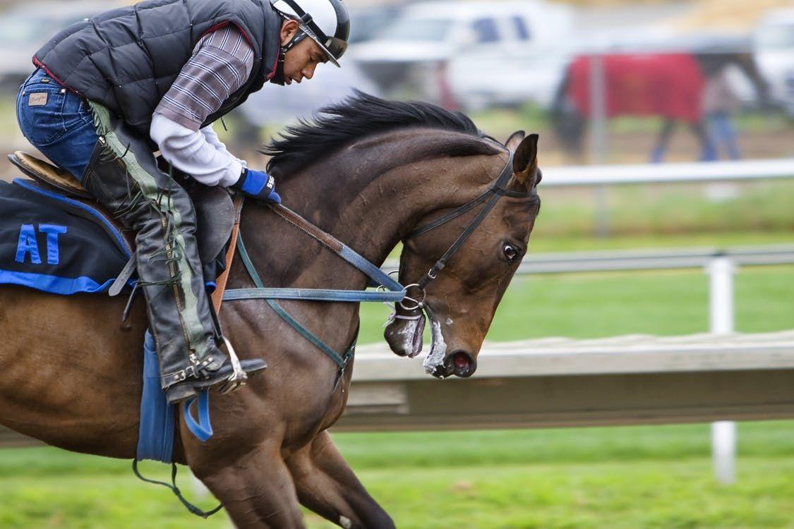 Horse Backriding Race